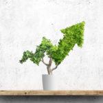 Gestión pasiva, una alternativa sencilla para invertir